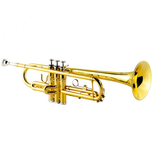 Trompeta Vivaldi Dorada con Boquilla y Estuche