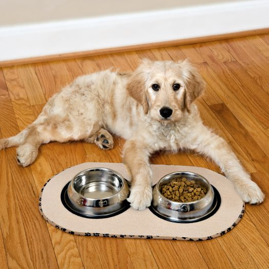 Alfombra Antideslizante para Plato de Mascotas