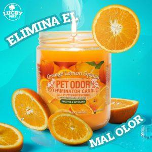 Candela Eliminadora de Olores fragancia Naranja y Limon marca Lucky Pets
