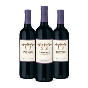 Combo de 3 Botellas de Vino Tinto Two Vines Merlot y Cabernet con 30% de Descuento