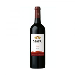Botella de Vino Tinto Mapu - Merlot - Chile - Valle Central