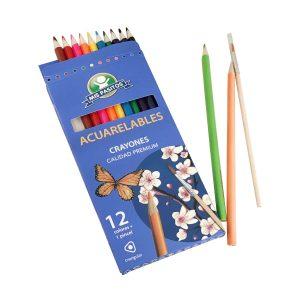 Crayones Triangulares Acuarelables 12 Colores + pincel marca Mis Pasitos