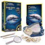 Fólsil de tiburon Shark Tooth DIG KIT National Geographic